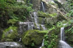Luxe vakantievilla huren met 15 personen in Ardennen