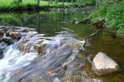 luxe villa huren in Ardennen voor 11 personen